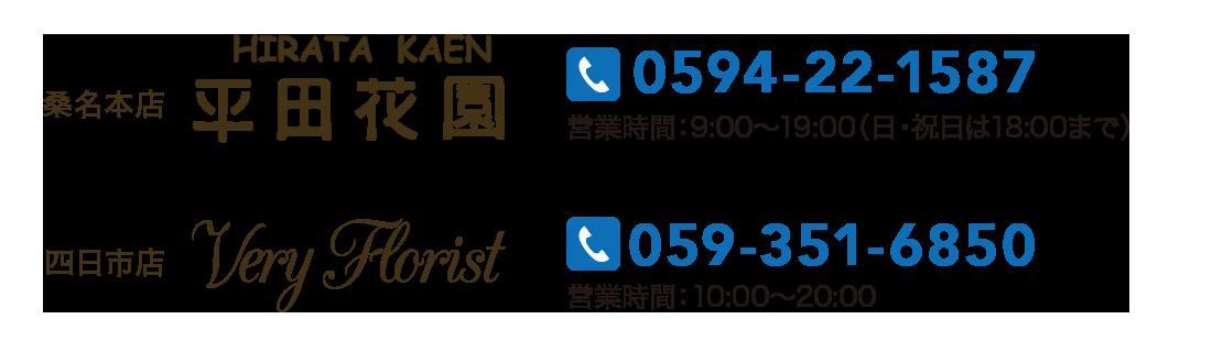 tel-3-1
