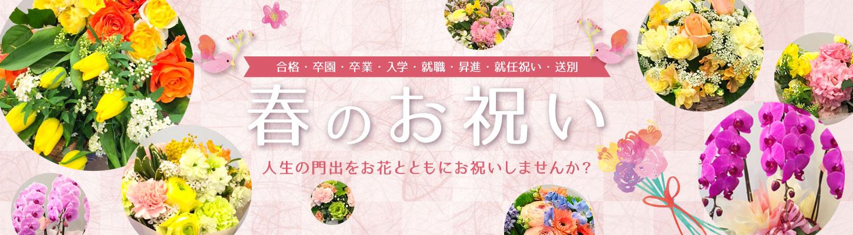 春のお祝い 〜合格/卒園/卒業/入学/就職/昇進/就任祝い・送別〜