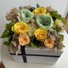 プリケーキ BOX